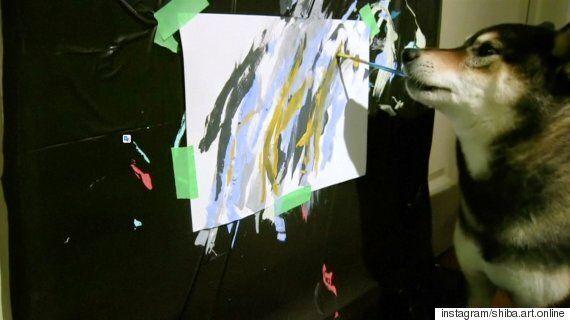 이 시바견은 추상적 표현주의 화풍의 그림을