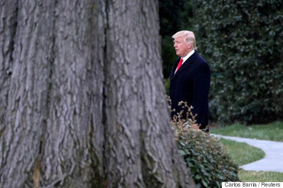 도널드 트럼프의 포브스 억만장자 순위가 208계단
