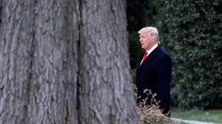 트럼프 포브스 억만장자 순위가 208계단