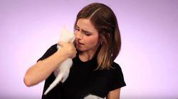 엠마 왓슨이 고양이 떼의 습격을