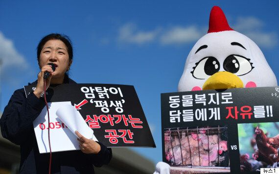 헌법에 동물보호권을 명시하자는 서명운동이
