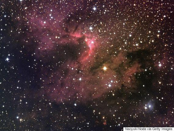 '코스모스' 저자 칼 세이건이 우주과학의 중요성을