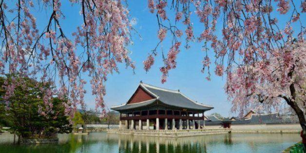 문화재청이 4대궁의 봄꽃 개화 예상 시기를