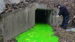 경기도 남양주 하천에 유출된 화학물질의