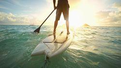 하와이에서 화학적 자외선 차단제를 금지하려는