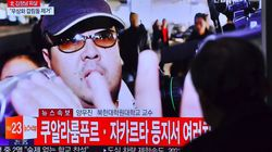 김정남은 김한솔이 대학을 졸업하면 다시 정치적 발언을 할