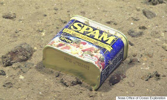 지구에서 가장 깊은 바다에서 극도로 유독한 오염 물질이