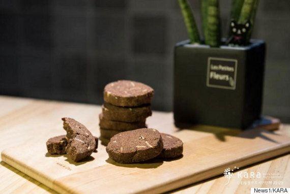 발렌타인데이에 앞서 '착한 초콜릿'을 선물할 방법이