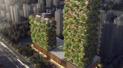 중국에 진짜 빌딩 숲이