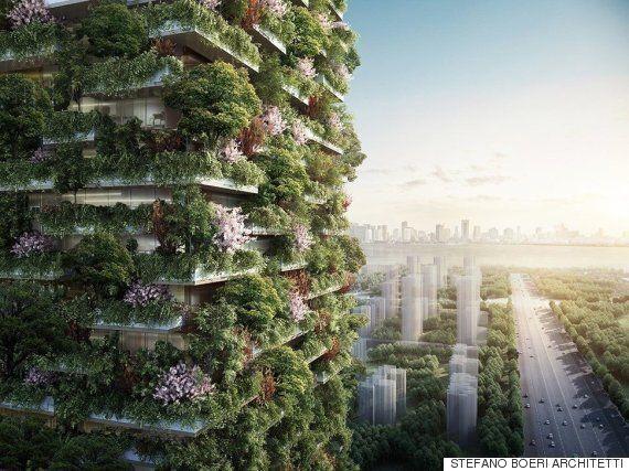 중국에 1,100그루의 나무가 심어진 진짜 빌딩 숲이