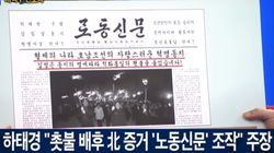 헌재에서 가짜 노동신문을 들고 '촛불집회 종북'을 외쳤던 박근혜 대리인의