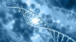 30억쌍 염기서열 모조리 분석 '풀시퀀싱 유전자 검사'를