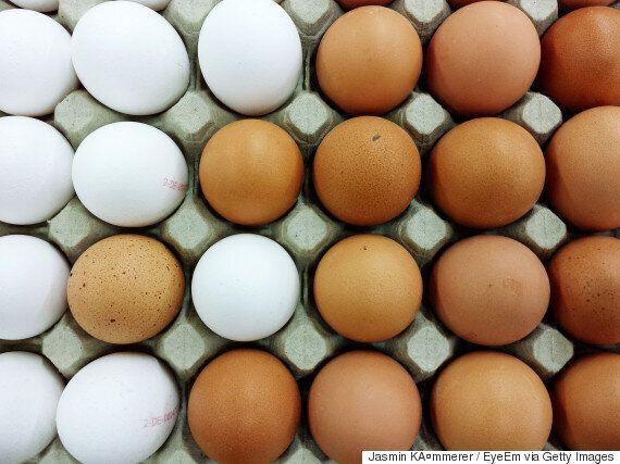 계란값은 정말 떨어지고