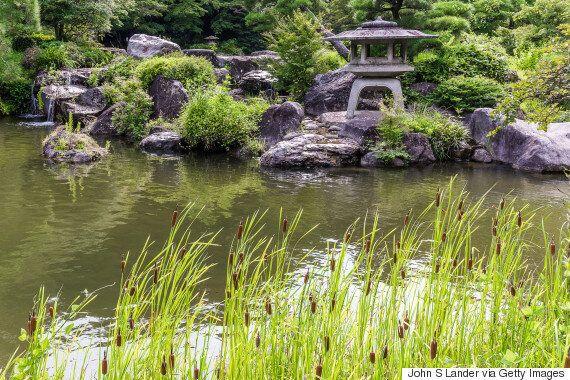 일본을 제대로 알기 위해서는 하이쿠에 대한 이해가