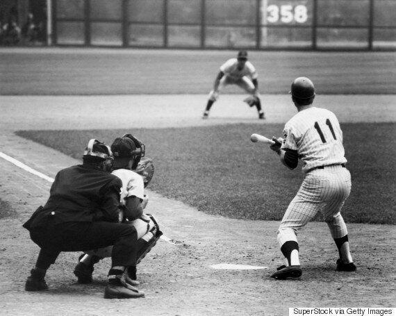 야구와 타자기로 과학을 이야기하는 스티븐 제이 굴드의