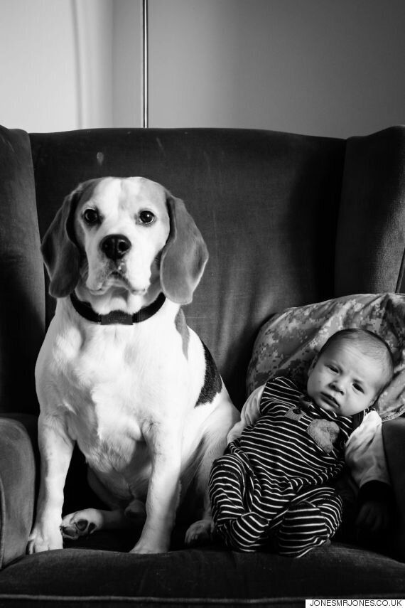 반려견과 아기의 사진을 똑같은 포즈로 2년 동안
