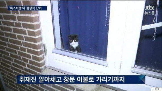 JTBC 정유라 체포 현장에는 짧은 순간 시선을 사로잡은 신스틸러가