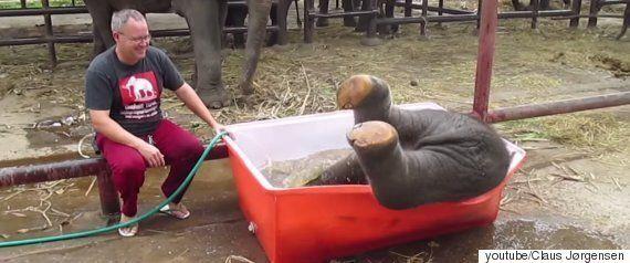 폭설이 내린 동물원에서 순찰하던 직원이 발견한 의외의