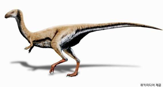 이빨이 나중에 부리로 변한 공룡이