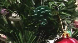이 크리스마스 트리에는 어딘가 이상한 데가