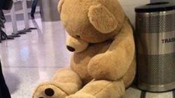 많은 사람을 슬프게 한 버려진 곰인형의