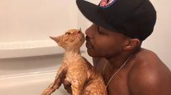 고양이에게 랩 해주는 고양이 위스퍼러가