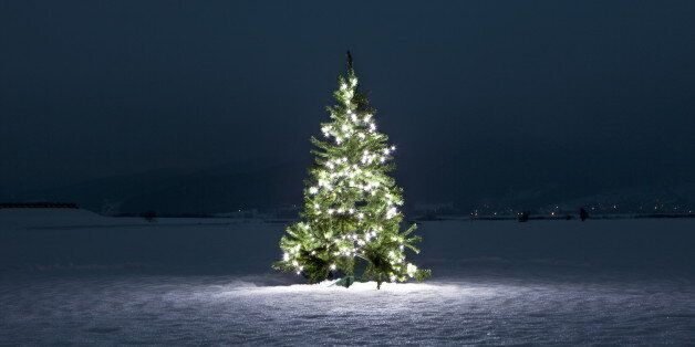 Illuminated christmas tree on the snow at