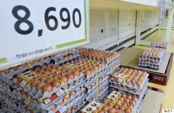 계란 10만톤 수입