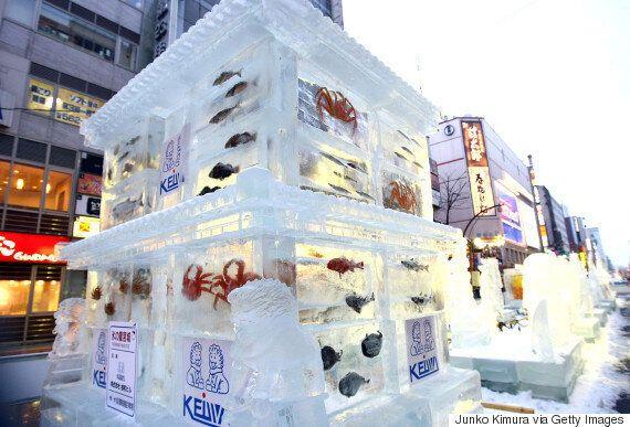 삿포로 눈축제가 '물고기 얼음' 전시 중단을