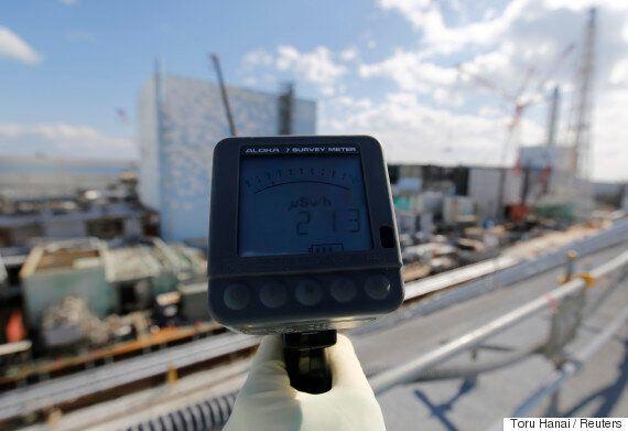 후쿠시마 누출 방사성 물질이 태평양을 건너 미국 서부 해안에서 5년 만에