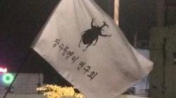 '박근혜-최순실' 때문에 피로한 사람에게 추천하는 '장수풍뎅이 연구회' 이야기(사진