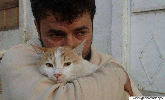 시리아 내전의 영웅 '고양이 아빠'의 보호소에 폭탄이