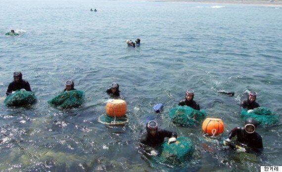 제주 해녀문화 '유네스코 인류무형유산'