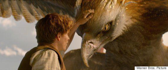 J.K. 롤링이 '신비한 동물사전 2'에 대한 큰 힌트를