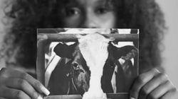동물보호단체 페타가 '채식을 하자'며 난데없이 '동물들의 고통'을 '강간 피해자의 고통'과