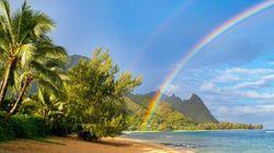 하와이 여행이 당신의 '자괴감'을 잊게 해줄