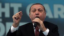 터키가 '비판 언론의 최후 보루'로 통하는 일간지의 회장을