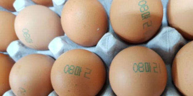 닭에는 사용할 수 없는 살충제인 피프로닐이 검출된 마리 농장의 달걀 껍데기에는 '08 마리'가 찍혀 있다. 식품의약품안전처