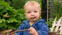 어린이 면역체계를 강화하는 비법