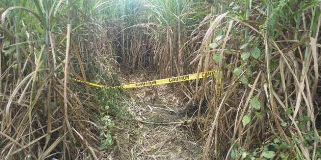 한국인 남녀 세 명이 시신으로 발견된 필리핀 마닐라 북쪽 산페르난도시 외곽