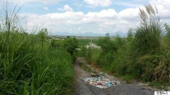 필리핀에서 살해된 한국인 3명은 150억원대 투자사기