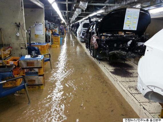 현대자동차가 태풍 '차바'로 침수됐던 신차 1087대를 모두 폐기한다고