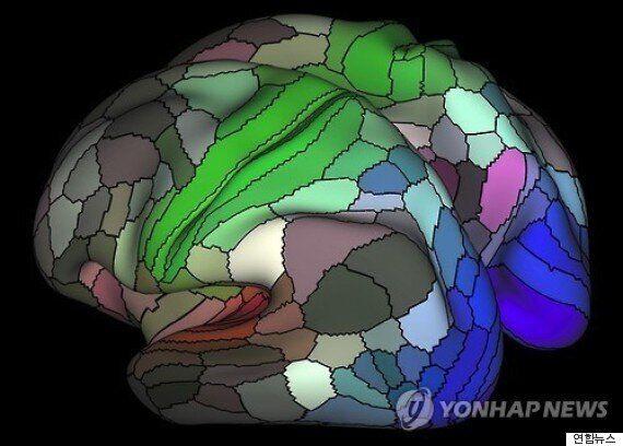 적게 먹는 사람의 뇌가 더 건강한 이유가