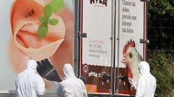냉동 트럭에서 난민 71명을 죽게 한 주범들에게 살인죄가