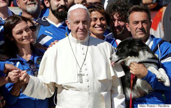 완벽할 뻔했던 프란치스코 교황의 사진에 귀여운 방해꾼이