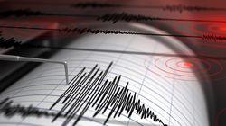 지진 예측에 관한 역사적 사실