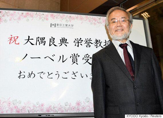 국내 과학자들이 말하는 일본인 과학자들의 노벨상 수상