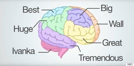 세스 마이어스가 트럼프의 뇌에는 7개의 단어밖에 없다고