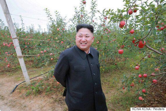 탈북한 수학영재가 한국에 도착했다는 보도가