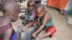 소말리아 인구의 40% 이상이 식량 부족으로 고통받고